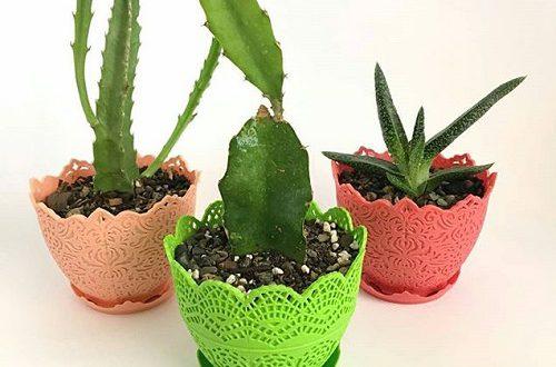 انواع گلدان پلاستیکی جدید