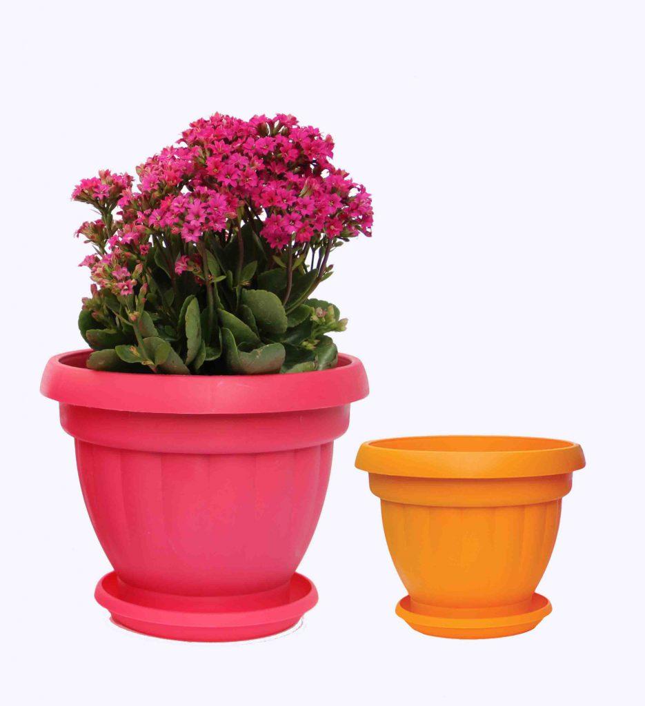 گلدان پلاستیکی گل اذین